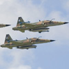 Fighter Aviation Reunion 2006 Feature Report
