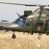 Exercise ELITE 2008 Feature Report
