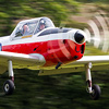 de Havilland Chipmunk 70th Anniversary