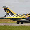 NATO Tiger Meet 2008 Feature Report