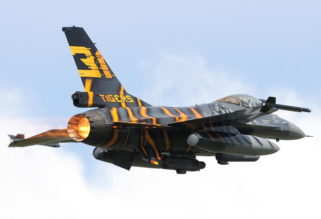tiger meet airshow 2012