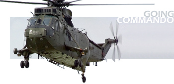 RNAS Yeovilton Air Day 2006 Title Image