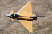 Pictures of the Week
